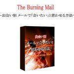 The Burning Mail(日高英治)で結果が出る人についてのレビュー