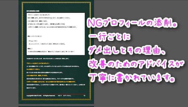NET SPIRAL(ネットスパイラル)でプロフィールについてテキスト解説