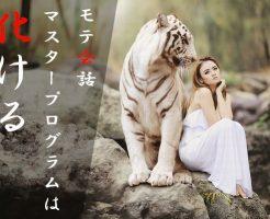 岩の上に座っている虎と女性